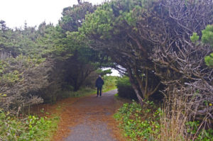 We Just Might Have What You Want in Yachats, Oregon
