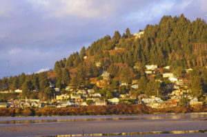 The #1 Reason to Visit the Central Oregon Coast