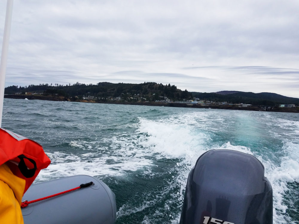 Whale Watching at Depoe Bay, Oregon