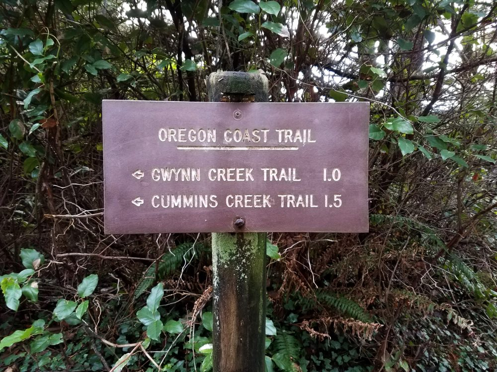 Reason #2 to Visit the Central Oregon Coast